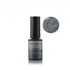 PSCHITT ARGENT - VERNIS PERMANENT 5ML