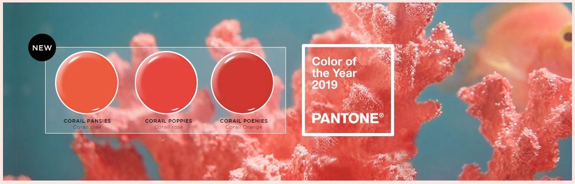 Vernis permanent - corail 2019